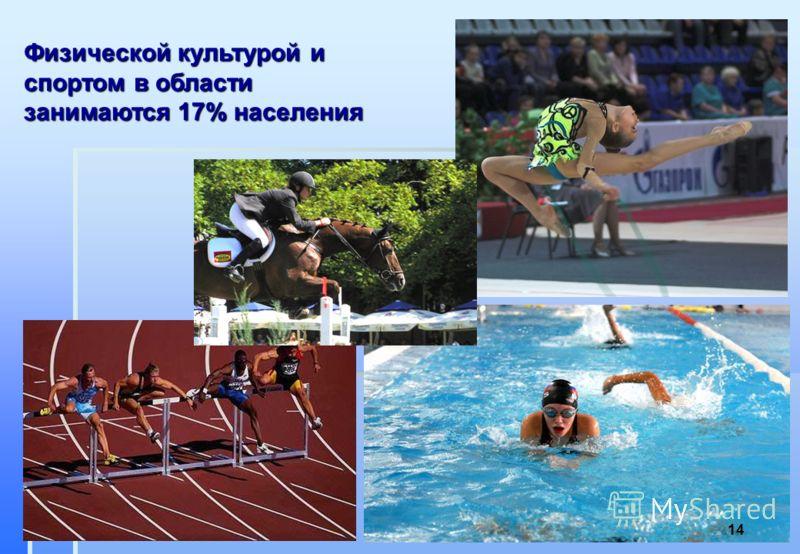 Физической культурой и спортом в области занимаются 17% населения 14