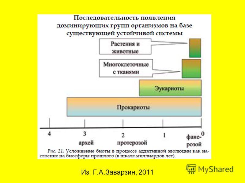 Из: Г.А.Заварзин, 2011