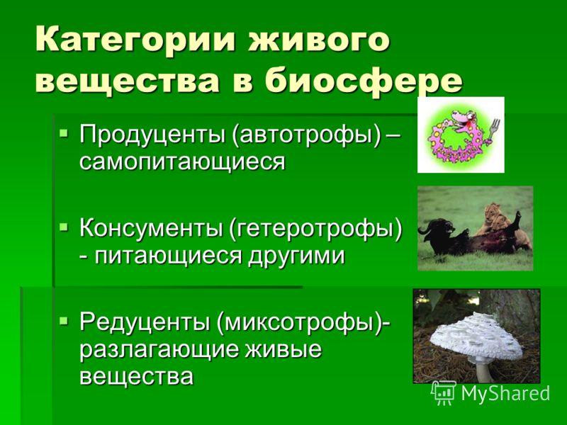 Категории живого вещества в биосфере Продуценты (автотрофы) – самопитающиеся Продуценты (автотрофы) – самопитающиеся Консументы (гетеротрофы) - питающиеся другими Консументы (гетеротрофы) - питающиеся другими Редуценты (миксотрофы)- разлагающие живые