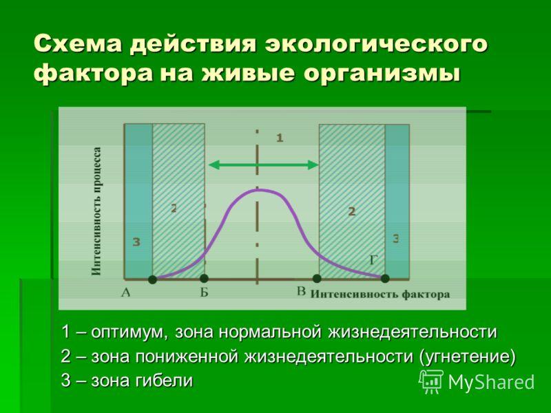 Схема действия экологического фактора на живые организмы 1 – оптимум, зона нормальной жизнедеятельности 2 – зона пониженной жизнедеятельности (угнетение) 3 – зона гибели