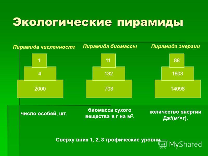 Экологические пирамиды 2000 4 1 703 132 11 14098 1603 88 Пирамида численности Пирамида биомассыПирамида энергии число особей, шт. биомасса сухого вещества в г на м 2. количество энергии Дж/(м 2 ×г). Сверху вниз 1, 2, 3 трофические уровни