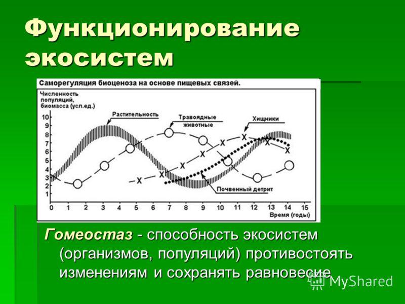 Функционирование экосистем Гомеостаз - способность экосистем (организмов, популяций) противостоять изменениям и сохранять равновесие