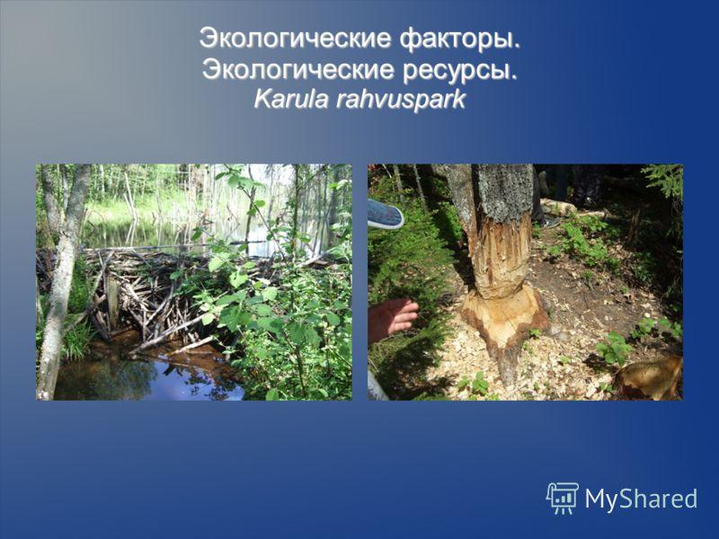 Экологические факторы. Экологические ресурсы. Karula rahvuspark