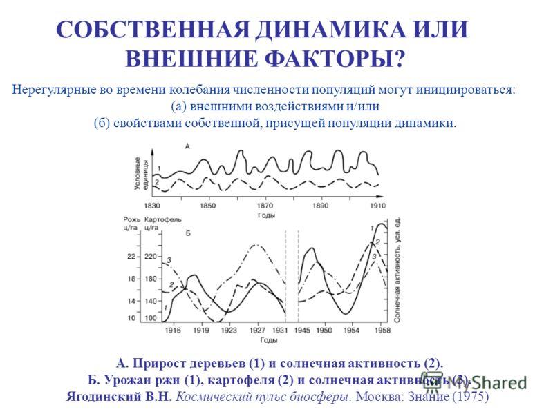 СОБСТВЕННАЯ ДИНАМИКА ИЛИ ВНЕШНИЕ ФАКТОРЫ? А. Прирост деревьев (1) и солнечная активность (2). Б. Урожаи ржи (1), картофеля (2) и солнечная активность (3). Ягодинский В.Н. Космический пульс биосферы. Москва: Знание (1975) Нерегулярные во времени колеб