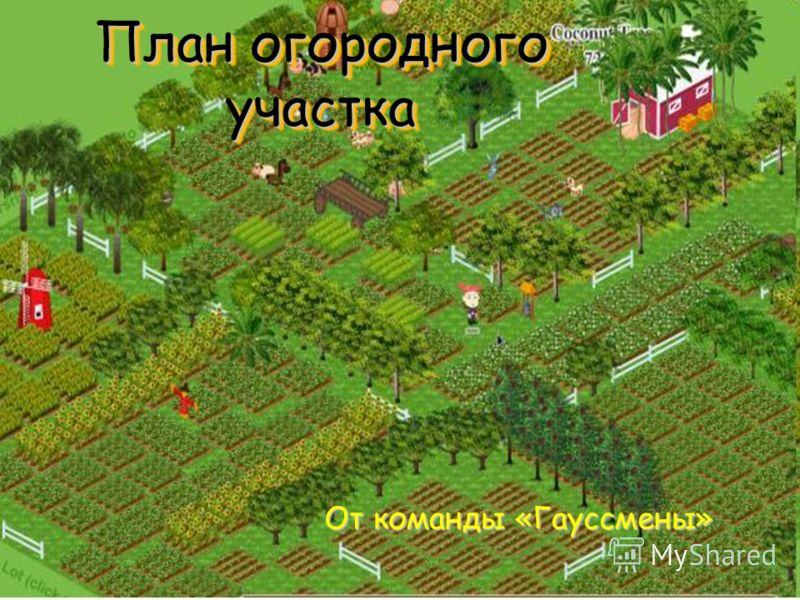 План огородного участка От команды «Гауссмены»