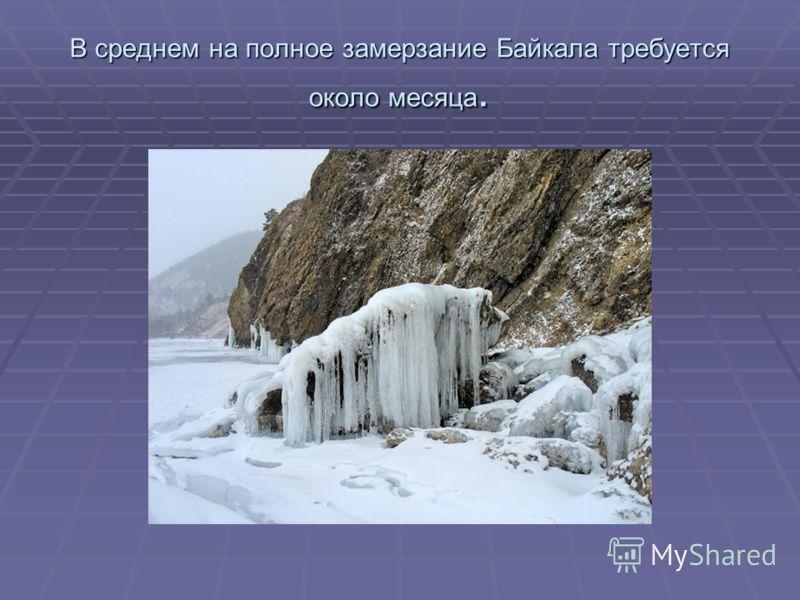 В среднем на полное замерзание Байкала требуется около месяца.