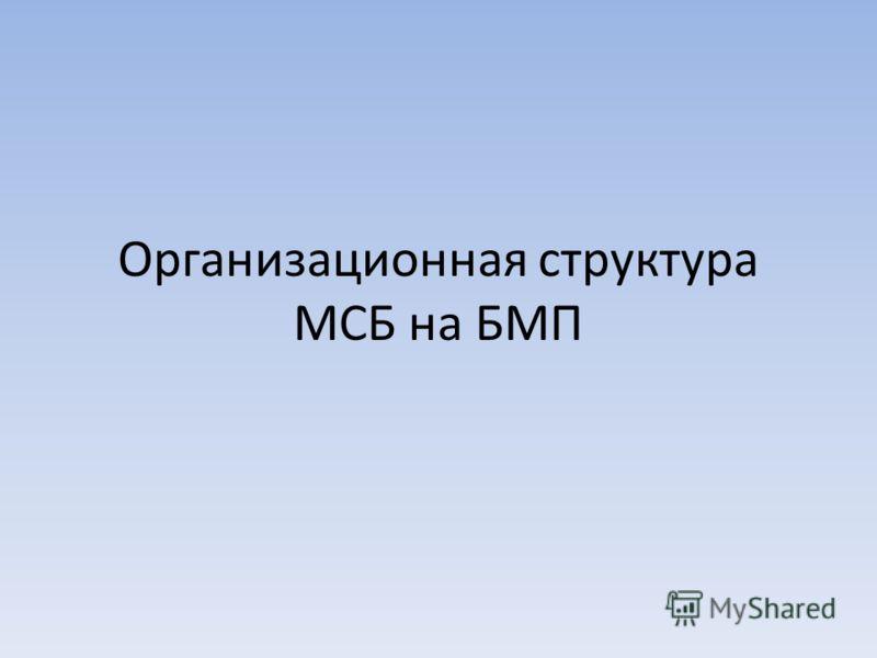 Организационная структура МСБ на БМП