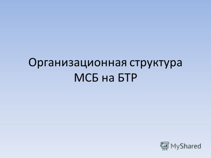 Организационная структура МСБ на БТР