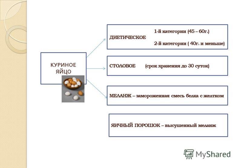 КУРИНОЕ ЯЙЦО 1-й категории (45 – 60г.) ДИЕТИЧЕСКОЕ 2-й категории ( 40г. и меньше) СТОЛОВОЕ (срок хранения до 30 суток) МЕЛАНЖ – замороженная смесь белка с желтком ЯИЧНЫЙ ПОРОШОК – высушенный меланж