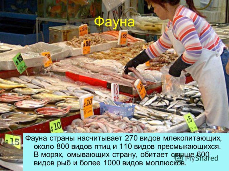 Фауна Фауна страны насчитывает 270 видов млекопитающих, около 800 видов птиц и 110 видов пресмыкающихся. В морях, омывающих страну, обитает свыше 600 видов рыб и более 1000 видов моллюсков.
