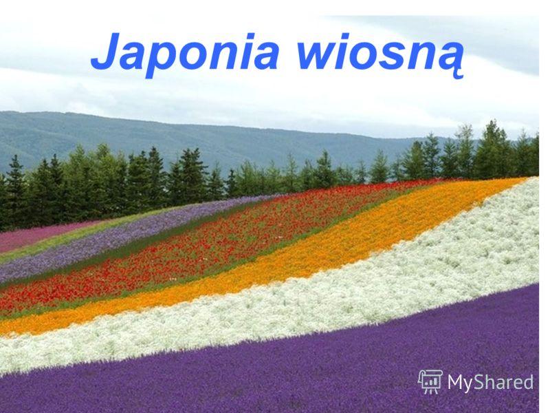 Japonia wiosną