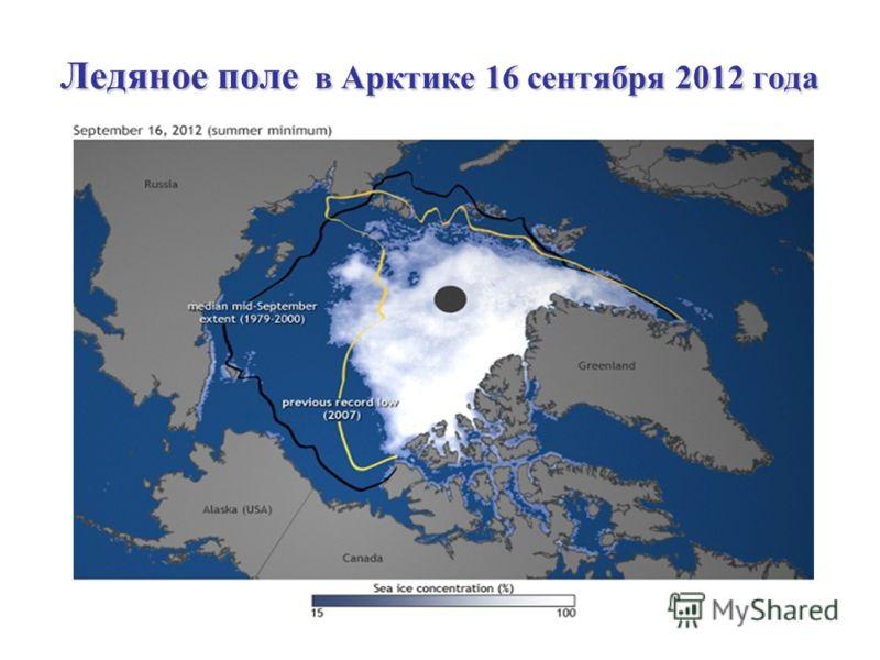Ледяное поле в Арктике 16 сентября 2012 года