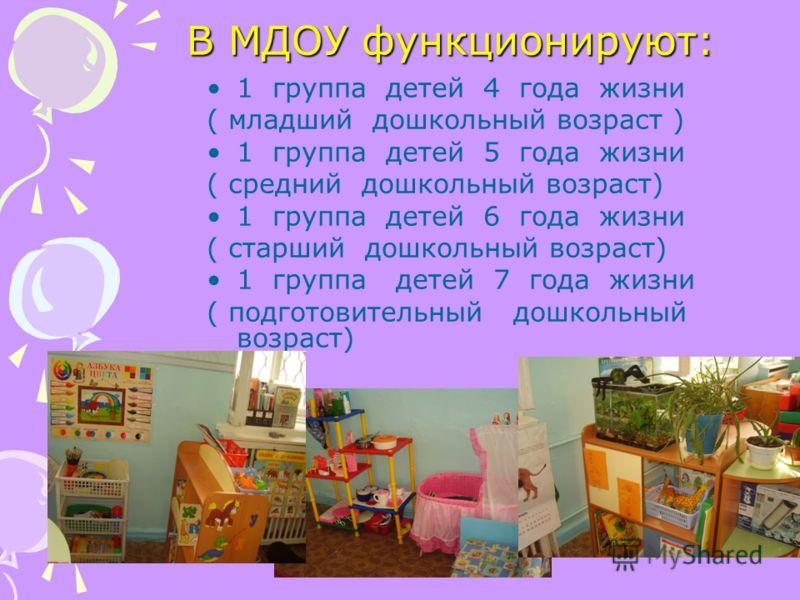 В МДОУ функционируют: 1 группа детей 4 года жизни ( младший дошкольный возраст ) 1 группа детей 5 года жизни ( средний дошкольный возраст) 1 группа детей 6 года жизни ( старший дошкольный возраст) 1 группа детей 7 года жизни ( подготовительный дошкол
