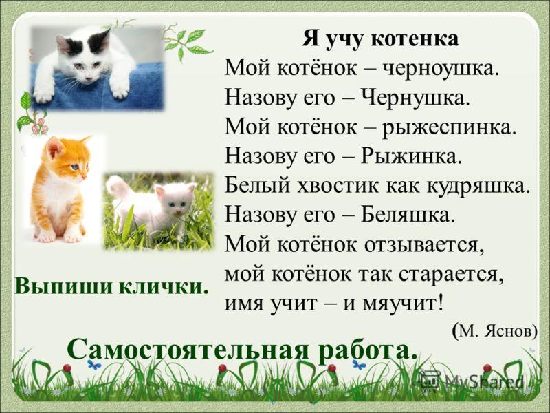 Я учу котенка Мой котёнок – черноушка. Назову его – Чернушка. Мой котёнок – рыжеспинка. Назову его – Рыжинка. Белый хвостик как кудряшка. Назову его – Беляшка. Мой котёнок отзывается, мой котёнок так старается, имя учит – и мяучит! ( М. Яснов) Выпиши