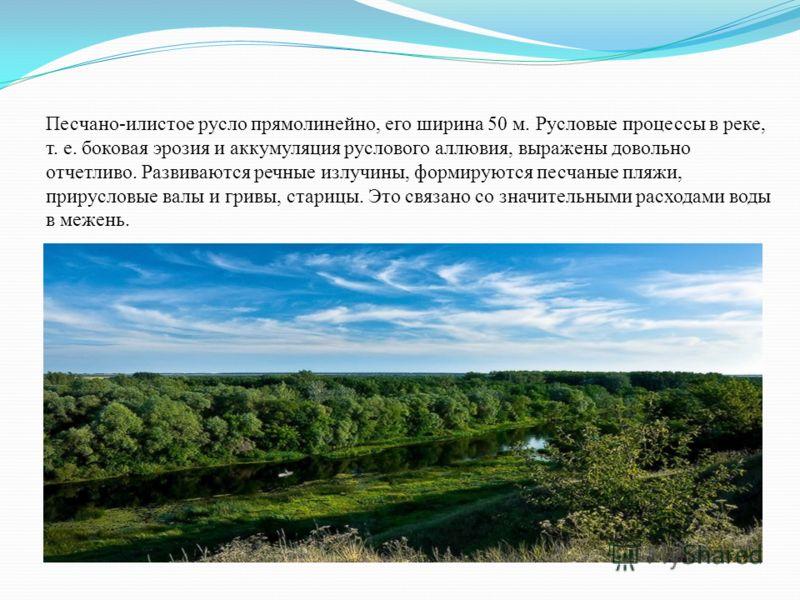 Протяженность реки от северной границы Воронежской области (к юго-западу от тамбовского села Шапкино) до устья 70 км. На этом участке Ворона принимает ряд притоков Большую Алабушку (длина 60 км), Малую Алабушку (25 км), Богану (28 км), Грибань (16 км