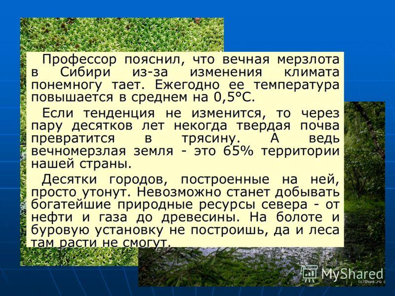 Профессор пояснил, что вечная мерзлота в Сибири из-за изменения климата понемногу тает. Ежегодно ее температура повышается в среднем на 0,5°С. Если тенденция не изменится, то через пару десятков лет некогда твердая почва превратится в трясину. А ведь