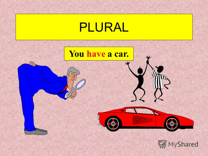 PLURAL We have a lamp.