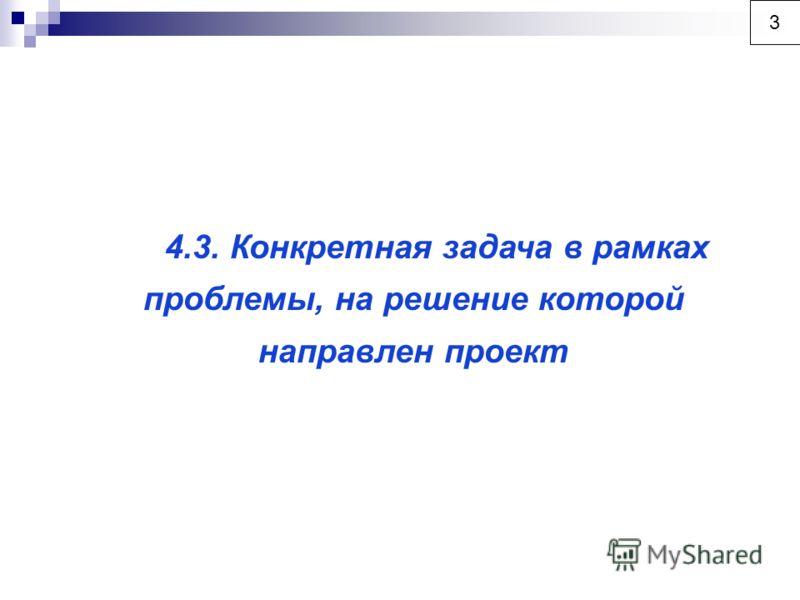 4.3. Конкретная задача в рамках проблемы, на решение которой направлен проект 3