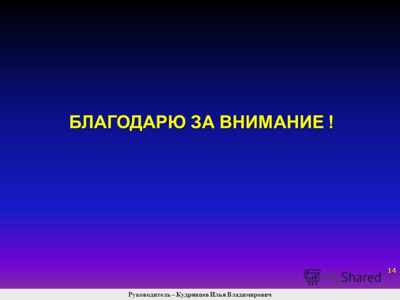 БЛАГОДАРЮ ЗА ВНИМАНИЕ ! 14 Руководитель – Кудрявцев Илья Владимирович