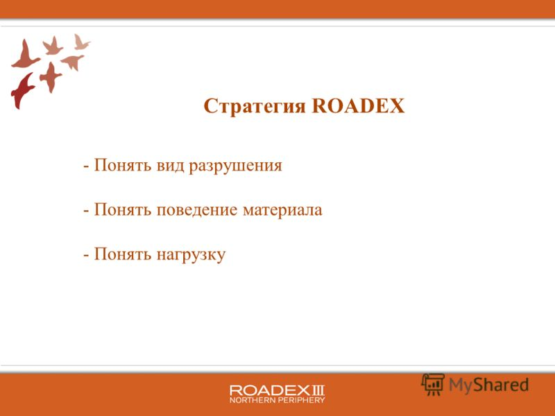  Понять вид разрушения  Понять поведение материала  Понять нагрузку Стратегия ROADEX