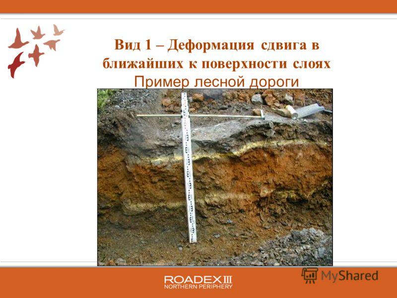 Вид 1 – Деформация сдвига в ближайших к поверхности слоях Пример лесной дороги