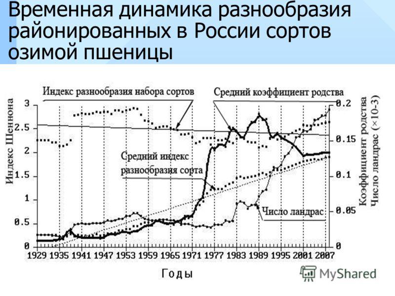 Временная динамика разнообразия районированных в России сортов озимой пшеницы