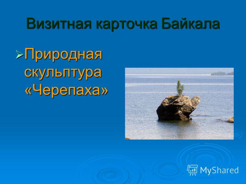 Визитная карточка Байкала Природная скульптура «Черепаха» Природная скульптура «Черепаха»