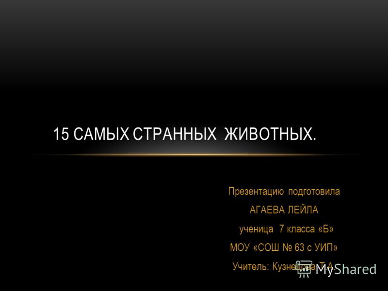 Презентацию подготовила АГАЕВА ЛЕЙЛА ученица 7 класса «Б» МОУ «СОШ 63 с УИП» Учитель: Кузнецова Т.А. 15 САМЫХ СТРАННЫХ ЖИВОТНЫХ.