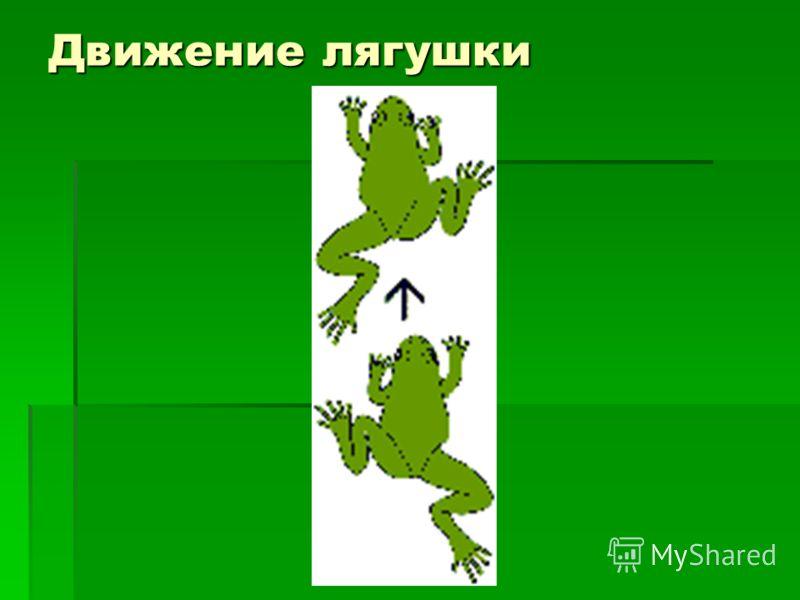 Движение лягушки