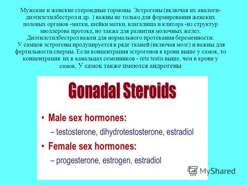 Мужские и женские стероидные гормоны. Эстрогены (включая их аналоги- диэтилстилбестрол и др. ) важны не только для формирования женских половых органов -матки, шейки матки, влагалища и клитора -из структур мюллерова протока, но также для развития мол