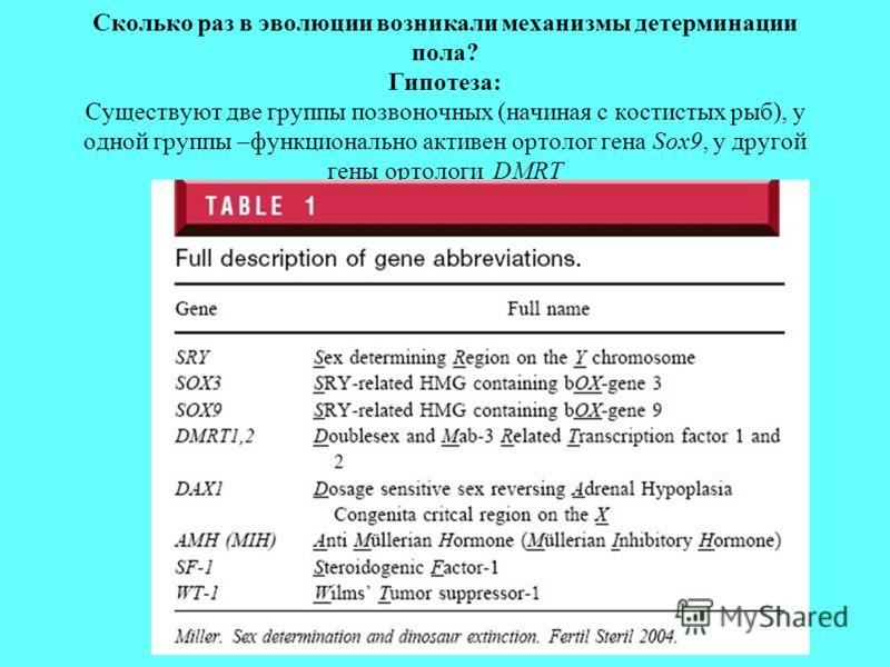 Сколько раз в эволюции возникали механизмы детерминации пола? Гипотеза: Cуществуют две группы позвоночных (начиная с костистых рыб), у одной группы –функционально активен ортолог гена Sox9, у другой гены ортологи DMRT