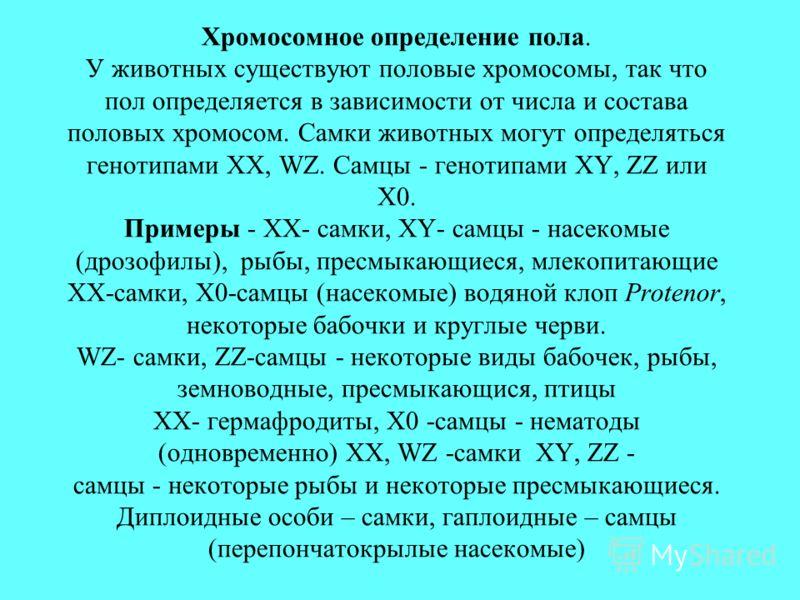 Хромосомное определение пола. У животных существуют половые хромосомы, так что пол определяется в зависимости от числа и состава половых хромосом. Самки животных могут определяться генотипами XX, WZ. Самцы - генотипами XY, ZZ или X0. Примеры - XX- са