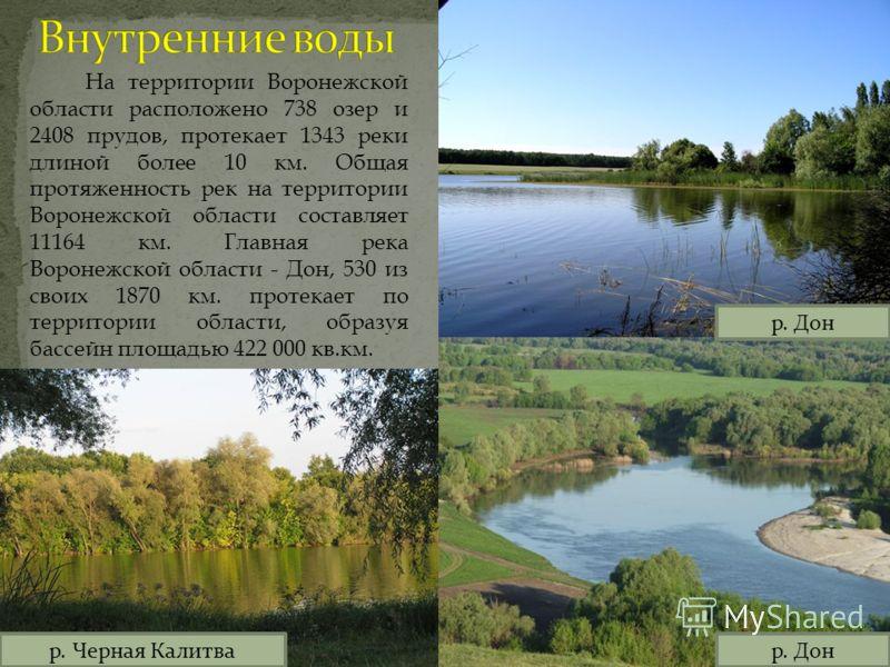 На территории Воронежской области расположено 738 озер и 2408 прудов, протекает 1343 реки длиной более 10 км. Общая протяженность рек на территории Воронежской области составляет 11164 км. Главная река Воронежской области - Дон, 530 из своих 1870 км.