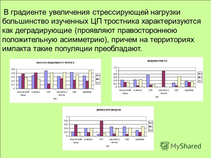 В градиенте увеличения стрессирующей нагрузки большинство изученных ЦП тростника характеризуются как деградирующие (проявляют правостороннюю положительную асимметрию), причем на территориях импакта такие популяции преобладают.