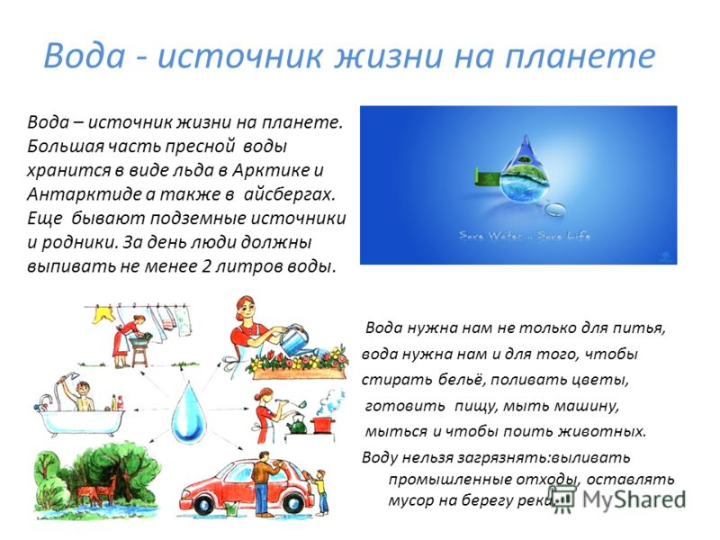Вода - источник жизни на планете Вода нужна нам не только для питья, вода нужна нам и для того, чтобы стирать бельё, поливать цветы, готовить пищу, мыть машину, мыться и чтобы поить животных. Воду нельзя загрязнять:выливать промышленные отходы, остав