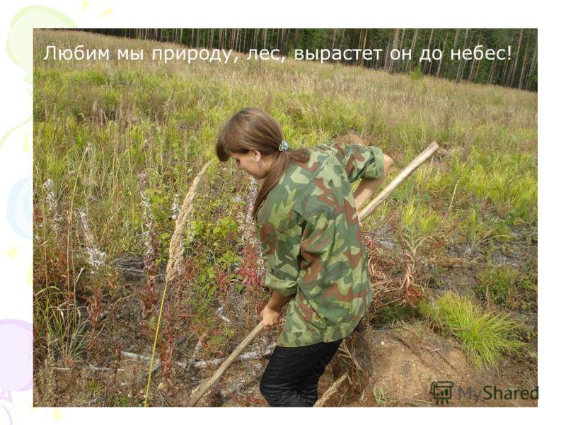 Любим мы природу, лес, вырастет он до небес!