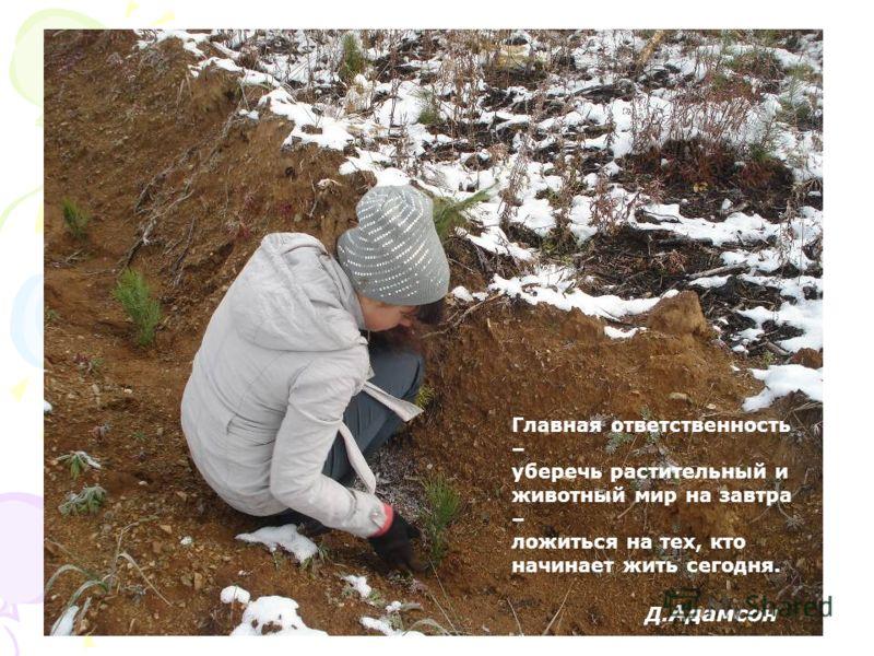 Главная ответственность – уберечь растительный и животный мир на завтра – ложиться на тех, кто начинает жить сегодня. Д. Адамсон
