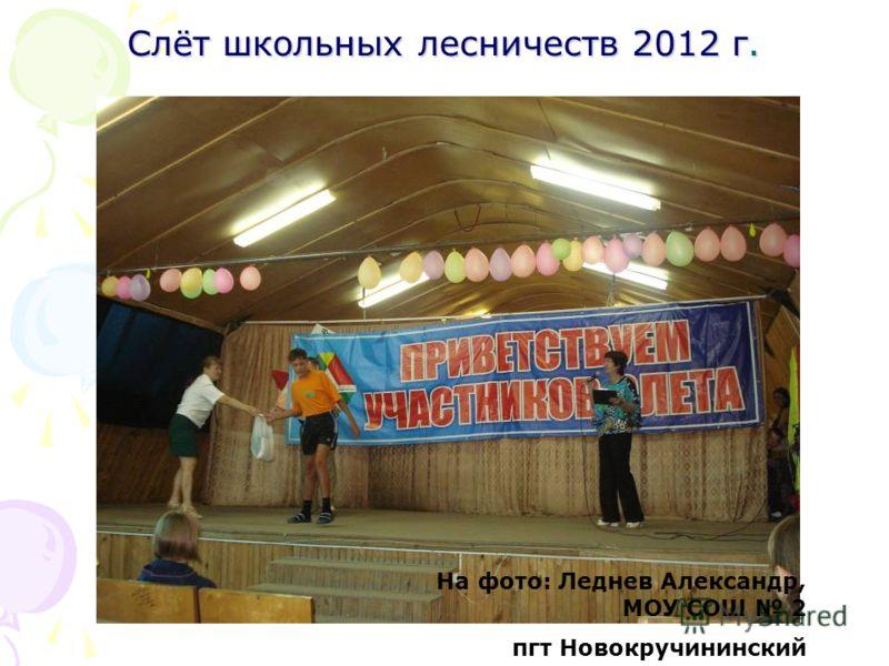 Слёт школьных лесничеств 2012 г. На фото: Леднев Александр, МОУ СОШ 2 пгт Новокручининский
