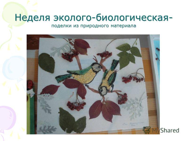 Неделя эколого-биологическая- поделки из природного материала