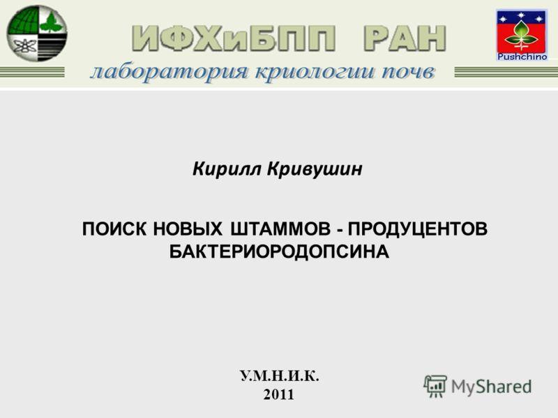 ПОИСК НОВЫХ ШТАММОВ - ПРОДУЦЕНТОВ БАКТЕРИОРОДОПСИНА У.М.Н.И.К. 2011 Кирилл Кривушин