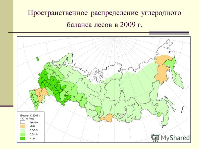 Пространственное распределение углеродного баланса лесов в 2009 г.