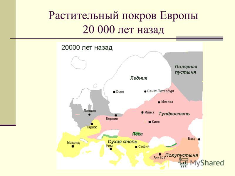 Растительный покров Европы 20 000 лет назад