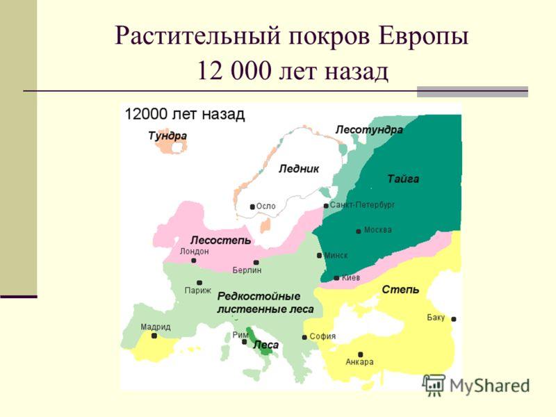 Растительный покров Европы 12 000 лет назад