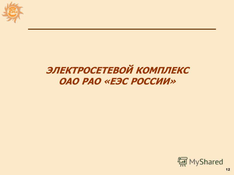 12 ЭЛЕКТРОСЕТЕВОЙ КОМПЛЕКС ОАО РАО «ЕЭС РОССИИ»