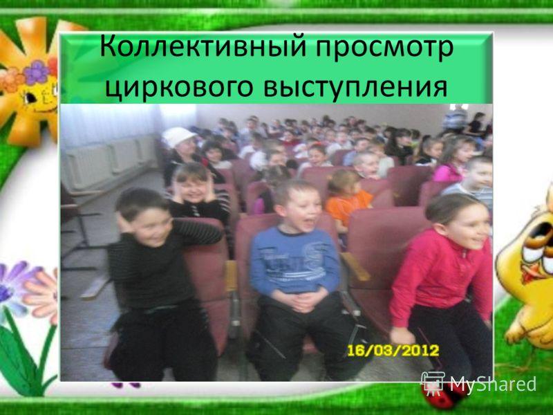 Коллективный просмотр циркового выступления