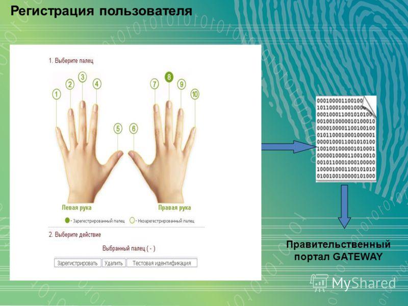 Регистрация пользователя Правительственный портал GATEWAY