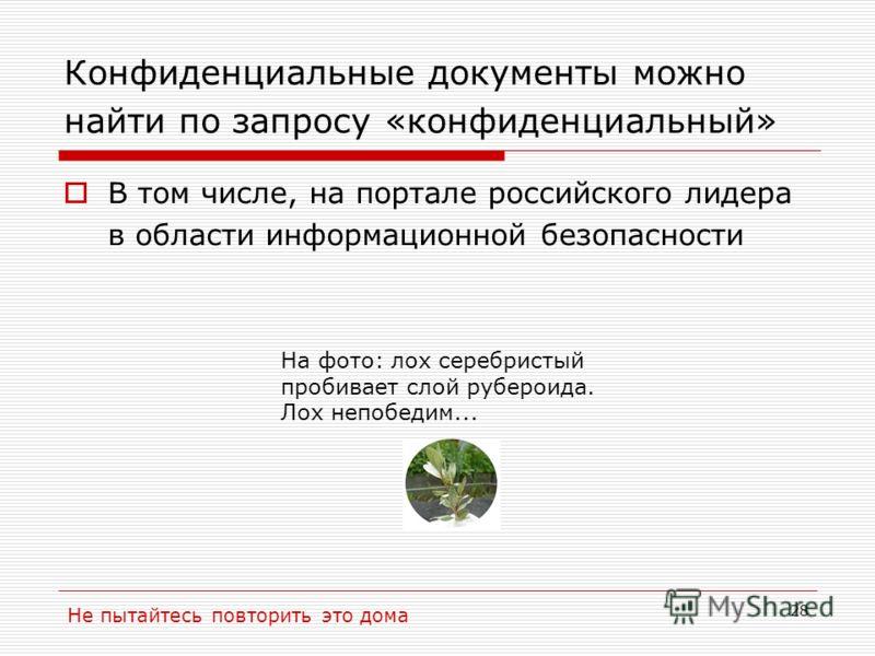 28 Конфиденциальные документы можно найти по запросу «конфиденциальный» В том числе, на портале российского лидера в области информационной безопасности Не пытайтесь повторить это дома На фото: лох серебристый пробивает слой рубероида. Лох непобедим.