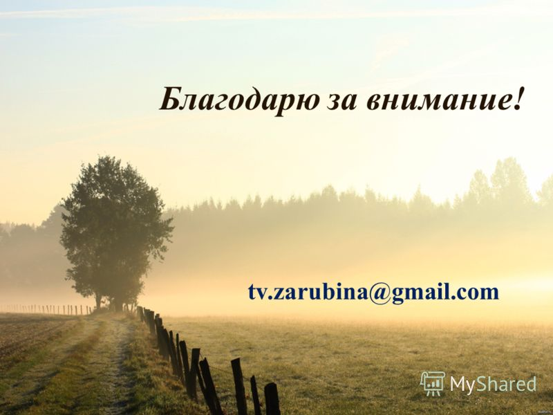 Благодарю за внимание! tv.zarubina@gmail.com