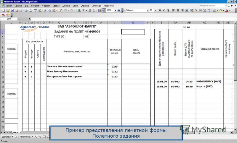 Пример представления печатной формы Полетного задания