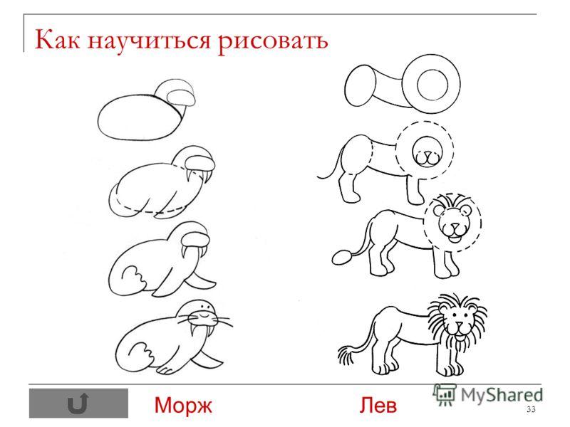 33 Как научиться рисовать Морж Лев